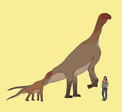 Atlasaurus Dinosaur Poster by Nemo Ramjet