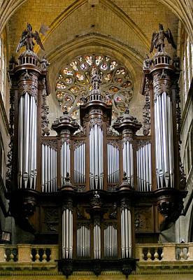 Auch Organ Poster
