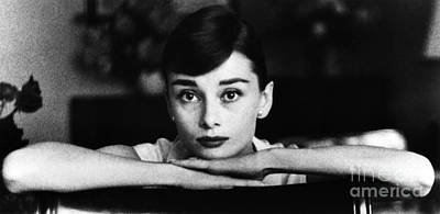 Audrey Hepburn Poster by George Daniell