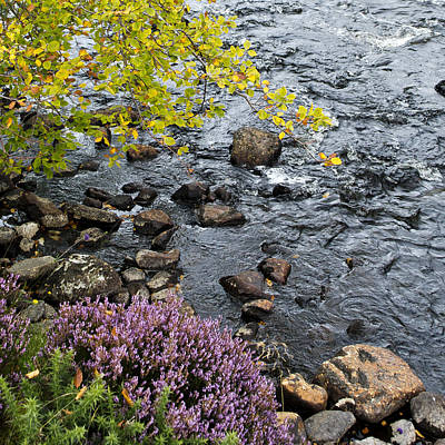 Poster featuring the photograph August Palette Scotland by Sally Ross