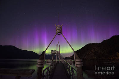 Aurora Borealis In Southern British Columbia Canada Poster by Armelle Troussard