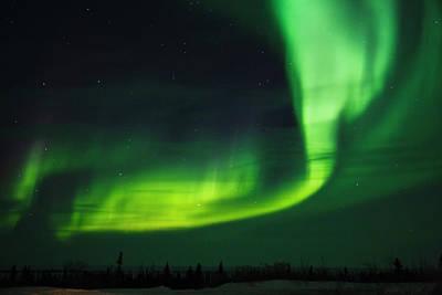 Aurora Light, Wapusk National Park Poster by Keren Su