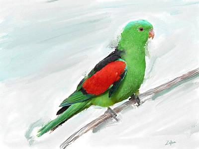 Australian Parrot Poster by Zilpa Van der Gragt