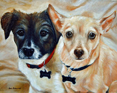 Australian Shepared And Chihuahua Basengi Mix  Poster by Sun Sohovich