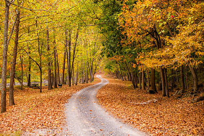 Autum Path Poster by Melinda Ledsome