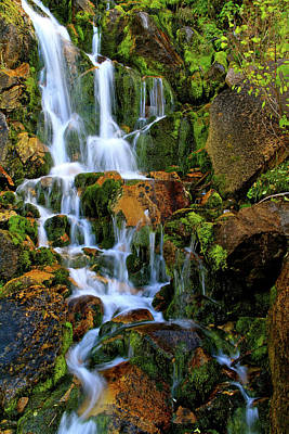 Autumn Along Summit Creek Poster