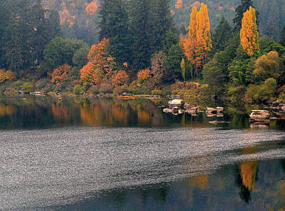 Autumn Along The Umpqua Poster