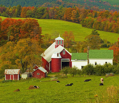 Autumn At Bogie Mountain Dairy Farm Poster