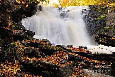 Autumn At Cattyman Falls Poster
