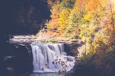 Autumn At Letchworth Poster