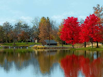 Autumn Beauty On A Pond Poster by Ron Grafe