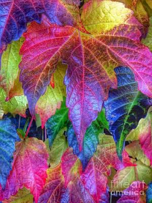 Autumn Bold Poster