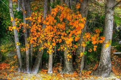 Autumn Breakout No.2 Poster