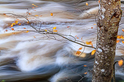 Autumn By The River Poster by Thomas Schoeller