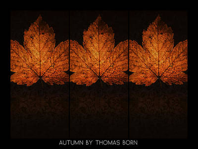 Poster featuring the photograph Autumn By Thomas Born by Thomas Born
