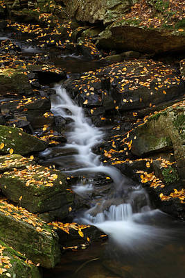 Autumn Cascade At Chesterfield Gorge - New Hampshire Poster