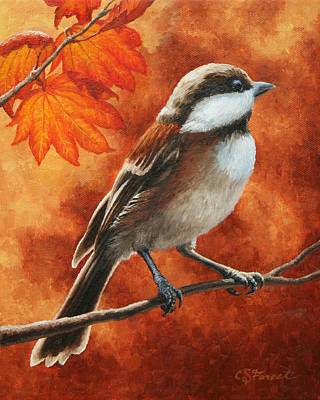Autumn Chickadee Poster by Crista Forest