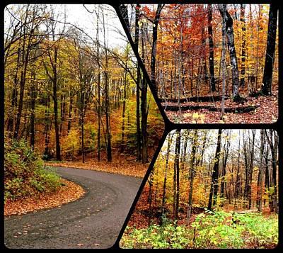 Autumn Collage Poster by Gail Matthews