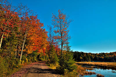 Autumn Colors At Cary Lake Poster by David Patterson