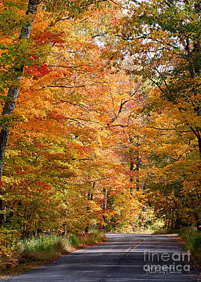 Poster featuring the photograph Autumn Colors - Colorful Fall Leaves Wisconsin IIi by David Perry Lawrence