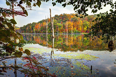 Autumn Colors Through The Trees On Monksville Reservoir - Long Pond Ironworks State Park Poster by Gary Heller