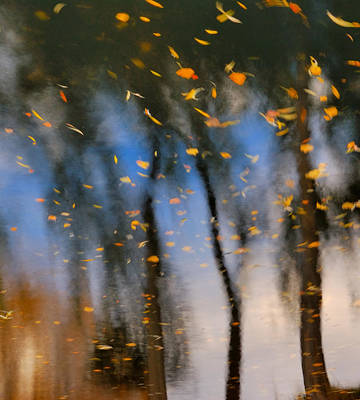Autumn Daze - Abstract Reflection Poster