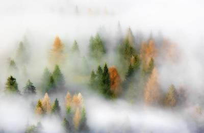 Autumn Dream Poster by Kristjan Rems