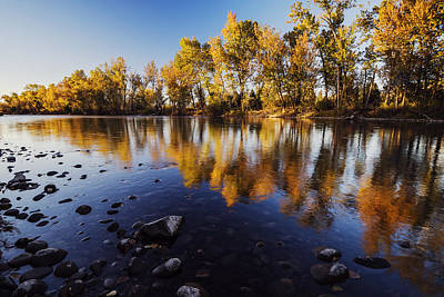 Autumn Evening Along Boise River Poster by Vishwanath Bhat