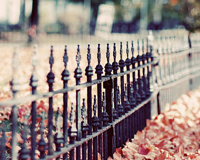 Autumn Fence Photograph Poster by Elle Moss