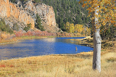 Autumn Fly Fishing Big Hole River Montana Poster by Jennie Marie Schell