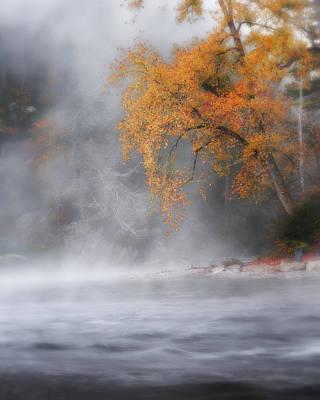 Autumn Fog Poster