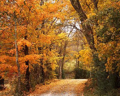 Autumn Gate Poster