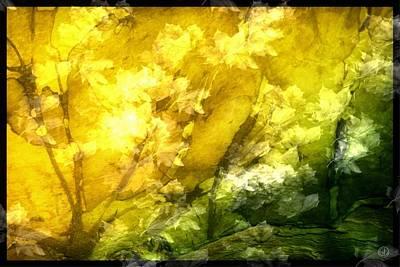 Autumn Glow Poster by Gun Legler