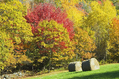 Autumn Hay Being Harvested In Maine Poster