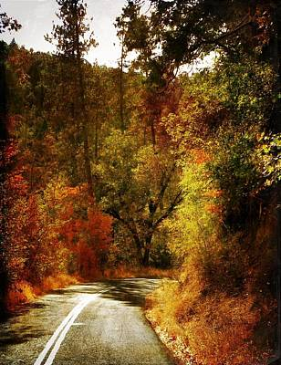 Autumn Highway Poster