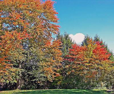 Ohio Autumn In Full Color Poster
