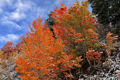 Autumn In Idaho Poster