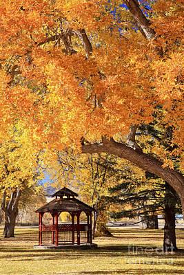Autumn In La Veta Poster by Pattie Calfy
