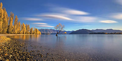 Autumn In Lake Wanaka Poster