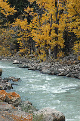 Autumn In Montana's Gallatin Canyon Poster by Bruce Gourley
