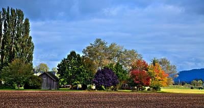 Autumn In Mount Vernon Washington Poster by David Patterson