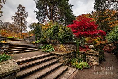 Autumn In The Garden Poster by Adrian Evans