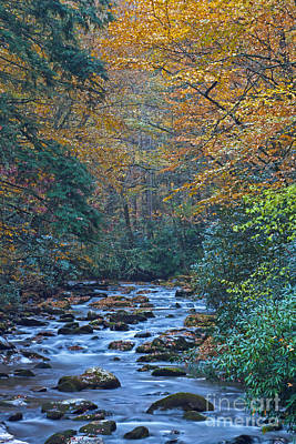 Autumn In The Great Smoky Mountains Vi Poster