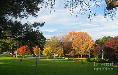 Poster featuring the photograph Autumn In The Park by Leanne Seymour