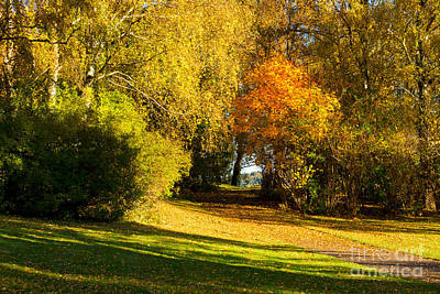 Autumn In The Park Poster by Lutz Baar