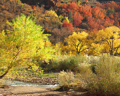 Poster featuring the photograph Autumn In Zion by Alan Socolik
