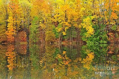 Autumn Kaleidoscope 10 Poster by Terri Gostola