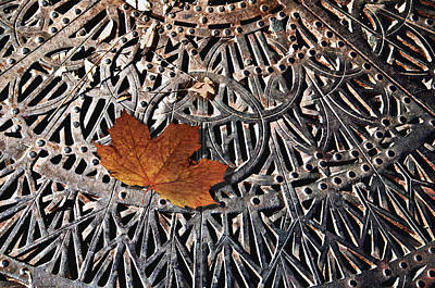 Autumn Leave On Iron Grate Poster by Larry Butterworth