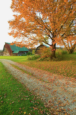 Autumn Leaves, Red Barn And Dirt Path Poster