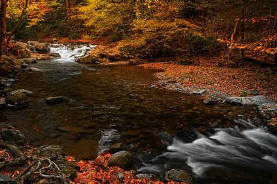 Autumn On Laurel Creek Poster by Johan Hakansson